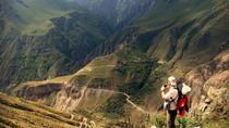 3-Day Hike to Colca Canyon from Arequipa, Arequipa, Private Sightseeing Tours
