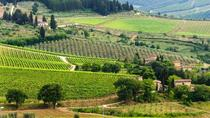 Private Tour: Chianti Region Round Trip Experience from Florence, Florence, Private Tours
