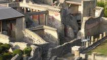Private Tour: Half Day Round Trip to Herculaneum, Naples, Private Transfers