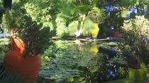 Majorelle Garden Tour and Camel Ride from Marrakech, Marrakech, null