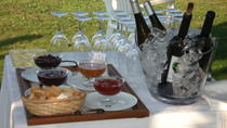Wine Tastings in Braga, Northern Portugal, Wine Tasting & Winery Tours