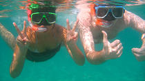 Glass-Bottom Boat Ride and Snorkel Tour in Cabo San Lucas, Los Cabos, Snorkeling