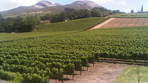 Private Tour: The Cape Winelands, Stellenbosch and Franschhoek from Cape Town , Cape Town, Private...