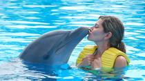 Dolphinarium Visit From Side, Side, Family-friendly Shows