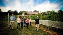 VIP Private Wine Tour with Lunch from Harrisburg, Harrisburg, Wine Tasting & Winery Tours