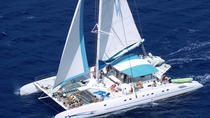 Saona Paradise Island Speedboat and Catamaran Excursion, Punta Cana, Day Cruises
