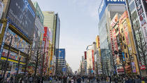 Private Custom Full Day Tokyo Manga Anime Tour by Chartered Vehicle, Tokyo, Custom Private Tours
