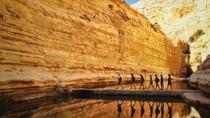 Private Tour:The highlights of the Negev From Jerusalem, Jerusalem, Day Trips