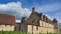 Afternoon tour Discovery in the Côte de Nuits vineyards, Dijon, Half-day Tours