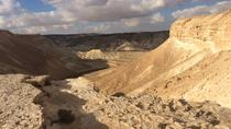 Private Beersheba Region Day Tour: Sde Boker and Mitzpe Ramon Negev from Tel Aviv, Tel Aviv, ...