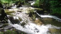 Monchique Water Route Hiking Tour Including Lunch, Faro, Hiking & Camping