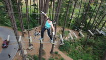 Adrenalin Forest Obstacle Course in Christchurch, Christchurch, Climbing
