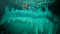 Cenote Chaak Tun Tour in Playa del Carmen, Playa del Carmen, Eco Tours