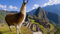 11-Day Best of Peru Tour from Lima: Andean Highlights and Machu Picchu, Lima, Private Sightseeing...