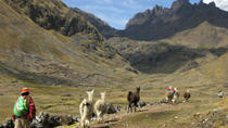 Lares Trek to Machu Picchu in 4 Days, Cusco, Private Day Trips