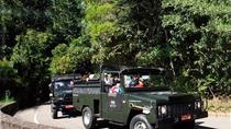Tijuca Forest Jeep Tour, Rio de Janeiro, 4WD, ATV & Off-Road Tours