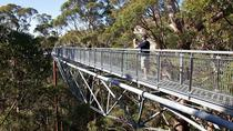 3-Day South West Tour from Perth Including Margaret River, Busselton and Albany, Perth, Multi-day...