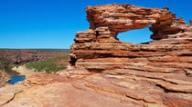 5-Night Perth to Exmouth Tour Including The Pinnacles, Monkey Mia and Ningaloo Reef, Perth,...