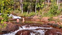 Litchfield Day Tour from Darwin Including Wangi Falls Florence Falls and Buley Rockhole, Darwin, ...