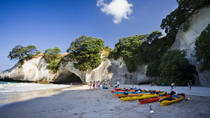 6-Day North Island Adventure Tour - Auckland to Wellington Return, Auckland, Helicopter Tours