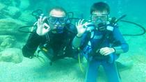 Private Scuba Diving for Beginners from Chania, Crete