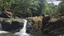 El Yunque Rain Forest Adventure - Off the Beaten Path - from San Juan, San Juan