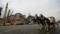Full Day Istanbul Classics and Bosphorus Cruise Tour, Istanbul, Walking Tours