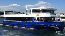 Short Guided Bosphorus Cruise with Transport, Istanbul, Day Cruises