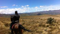 2-Day at La Hacienda Including Horse Riding and Otavalo Indigenous Market, Quito, Overnight Tours