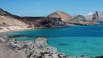 5-Day Galapagos Island Hopping All-Inclusive Tour, Galapagos Islands, Multi-day Tours