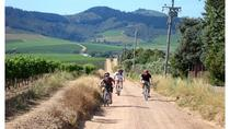 Cape Winelands Cycle Tour and Wine Tasting from Stellenbosch, Stellenbosch, Bike & Mountain Bike ...