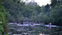 Toronto Islands Stand-Up Paddleboarding Tour, Toronto