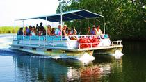 Black River Safari and YS Falls Tour from Negril, Negril, Half-day Tours