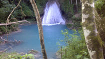 Blue Hole and River Gully Rainforest Adventure Tour from Falmouth, Falmouth, Half-day Tours