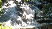Dunn's River Falls and Fern Gully Highlight Adventure Tour from Ocho Rios, Ocho Rios, Bus & Minivan ...