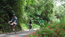 Original Blue Mountain Bicycle Tour from Falmouth, Falmouth, Bike & Mountain Bike Tours