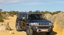 Pinnacles 4WD Hummer Day Tour from Perth Including Moore River Guilderton Cervantes Caversham ...