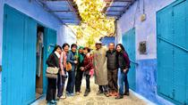 Small Group Tour: 14-Night Morocco Round-Trip from Casablanca, Casablanca, Multi-day Tours
