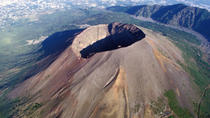 Mount Vesuvius Half-day Coach Tour from Sorrento, Sorrento, Half-day Tours