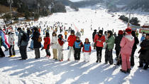 Ski Experience for Beginners, Seoul, null