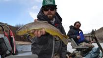 Vail Fly Fishing Float Trip, Vail, Fishing Charters & Tours