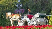 Horse-Drawn Carriage Tour of Beacon Hill Park, Victoria, Horse Carriage Rides