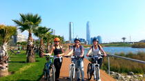 Santiago Bike Tour with Sky Costanera Center , Santiago, Bike & Mountain Bike Tours