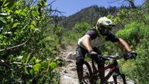 Mt Wilson Mountain Bike Shuttle Sample, Los Angeles, Bike & Mountain Bike Tours