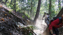 Mt Wilson Private Full Day Mountain Biking Tour and Shuttle, Los Angeles, Bike & Mountain Bike Tours