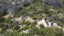Mt Wilson Private Full Day Mountain Biking Tour, Los Angeles, Bike & Mountain Bike Tours