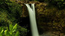 Waterfall Sites and Garden Delights - Small Group Tour, Big Island of Hawaii, Full-day Tours