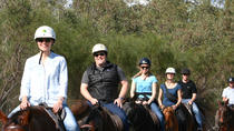 Neergabby Horse Riding River Adventure, Perth, Horseback Riding
