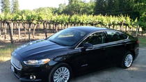 Private Transfer: Silicon Valley to San Francisco International Airport, San Francisco, Private...