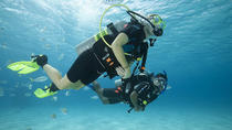 PADI 2 Dives Package in Tenerife with Transfers, Tenerife, Snorkeling